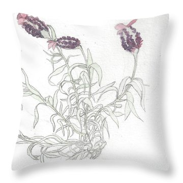 Spanish Lavender Throw Pillow