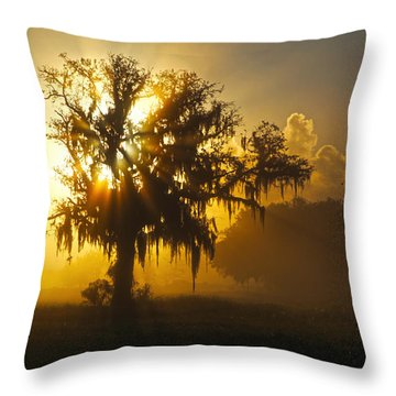Spanish Morning Throw Pillow