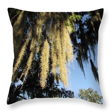 Spanish Moss Canopy Throw Pillow
