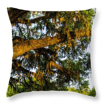 Spanish Moss In The Gloaming Throw Pillow