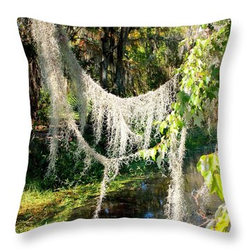 Spanish Moss Over The Swamp Throw Pillow by Carol Groenen