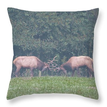 Sparking Elk On A Foggy Morning - 1957 Throw Pillow