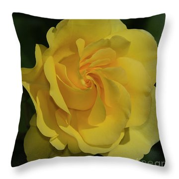 Sparkle And Shine Rose Throw Pillow