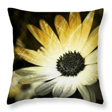 Sparkle Daisies Throw Pillow