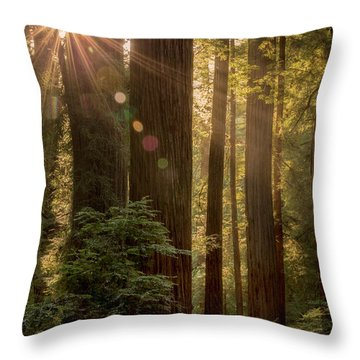 Sparkle In The Redwoods Throw Pillow