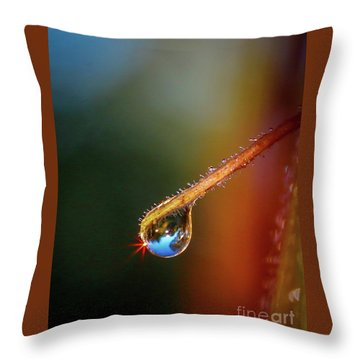 Throw Pillow featuring the photograph Sparkling Drop Of Dew by Tom Claud