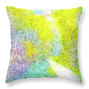 Throw Pillow featuring the digital art Sparkling Pathway - Trail In Santa Monica Mountains by Joel Bruce Wallach