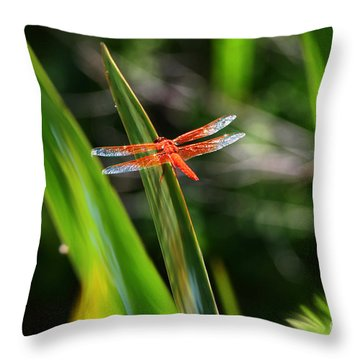 Sparkling Red Dragonfly Throw Pillow