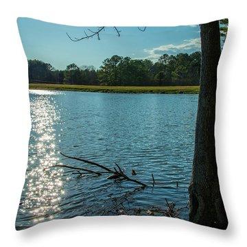 Sparkling Water Throw Pillow