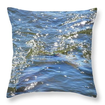 Sparkling Waters Throw Pillow