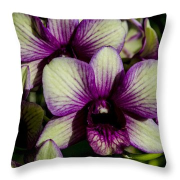 Sparkly Moth Orchid Throw Pillow
