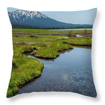Sparks Spring Bloom  Throw Pillow