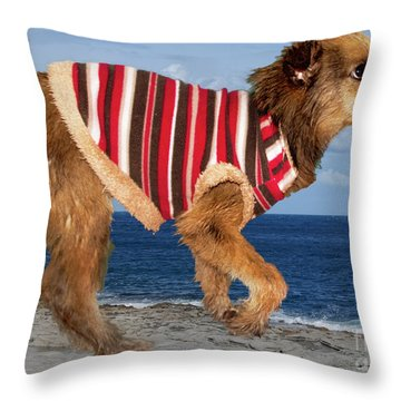 Sparky Throw Pillow by Al Bourassa