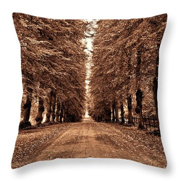 Throw Pillow featuring the photograph Sparreholm In Sepia by Nancy De Flon