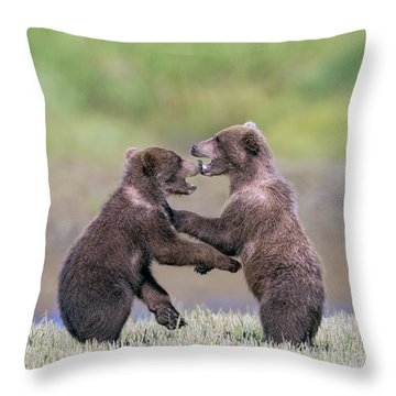 Sparring Cubs Throw Pillow