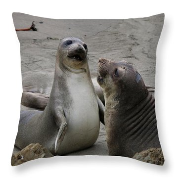 Sparring Seals  Throw Pillow