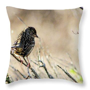 Snarky Sparrow Throw Pillow