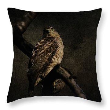 Sparrow Hawk Throw Pillow by Manjot Singh Sachdeva