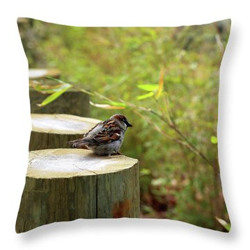 Sparrow In Spring Throw Pillow