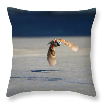 Sparrow On A Mission Throw Pillow