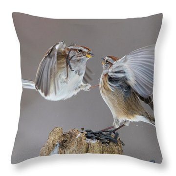 Throw Pillow featuring the photograph Sparrows Fight by Mircea Costina Photography