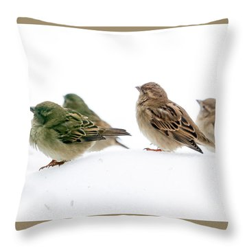 Sparrows In The Snow Throw Pillow