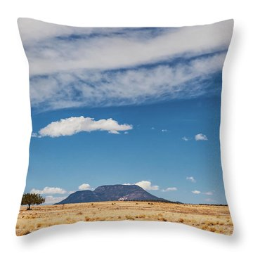 Throw Pillow featuring the photograph Sparse by Rick Furmanek