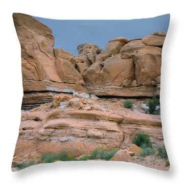 Spartan Look Throw Pillow