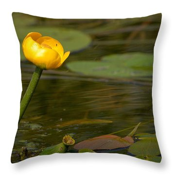 Throw Pillow featuring the photograph Spatterdock by Jouko Lehto