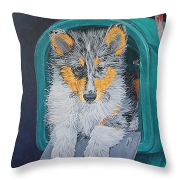 Special Delivery Throw Pillow by Wendy Shoults
