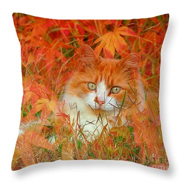 Special Kitty Throw Pillow