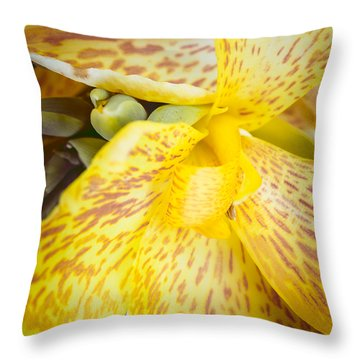 Throw Pillow featuring the photograph Speckled Canna by Christi Kraft