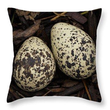 Speckled Killdeer Eggs By Jean Noren Throw Pillow