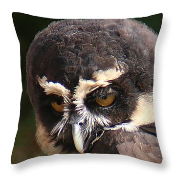 Throw Pillow featuring the photograph Spectacled Owl Portrait 2 by William Selander
