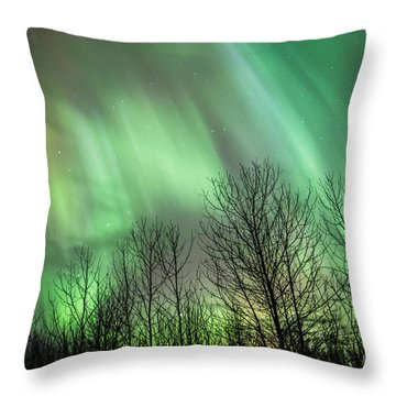 Spectacular Lights Throw Pillow