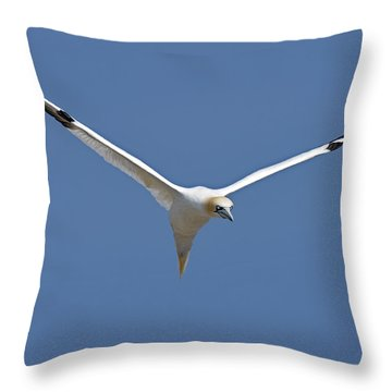 Speed Adjustment Throw Pillow by Tony Beck