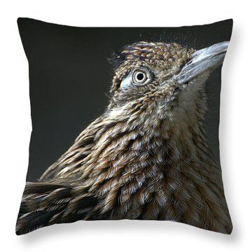 Speed Demon Throw Pillow
