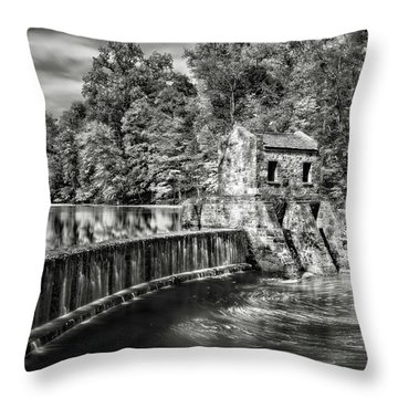 Throw Pillow featuring the photograph Speedwell Swirls by Eduard Moldoveanu