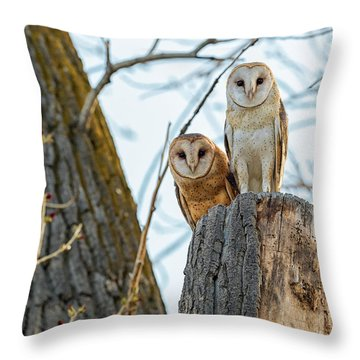 Speedy Little Bastards Throw Pillow