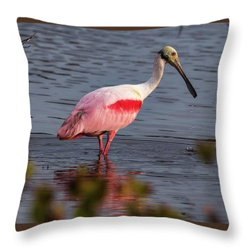 Spoonbill Fishing Throw Pillow