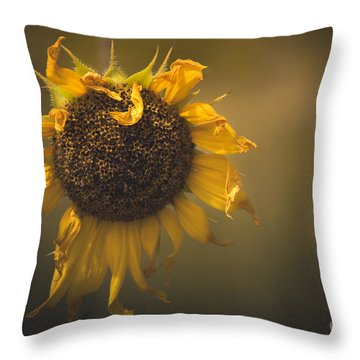 Spent Sunflower Throw Pillow by The Forests Edge Photography - Diane Sandoval