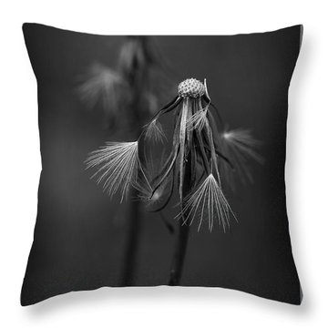 Spent Wishes Throw Pillow