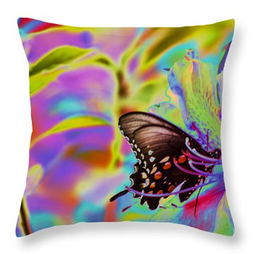 Spicebush Swallowtail Butterfly Solorize Throw Pillow by Donna Brown