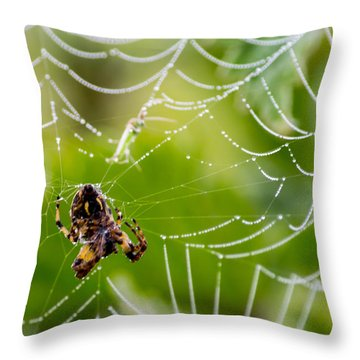 Spider And Spider Web With Dew Drops 05 Throw Pillow