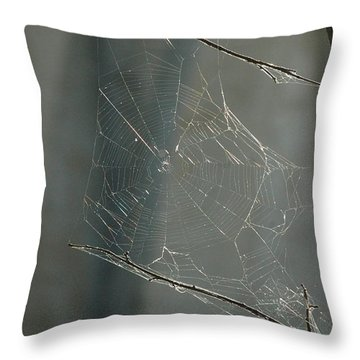 Spider Art Throw Pillow by Trish Hale