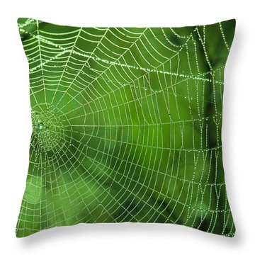 Spider Dew Throw Pillow by Paul Marto