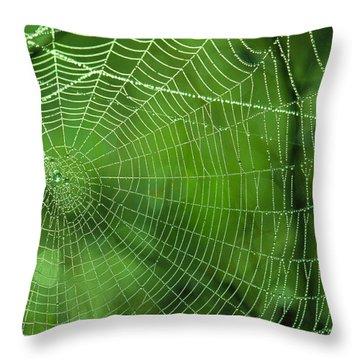 Spider Dew Throw Pillow