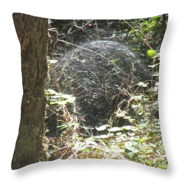 Throw Pillow featuring the photograph Spider Dome by Marie Neder
