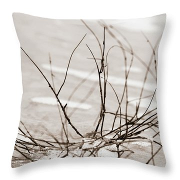 Throw Pillow featuring the photograph Spider Driftwood by Chris Bordeleau