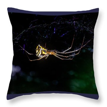 Spider Hanging In Web Throw Pillow